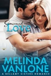 Seasoned With Love book summary, reviews and download