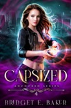 Capsized book summary, reviews and download