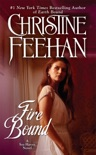 Fire Bound book summary, reviews and downlod