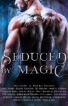 Seduced by Magic: A Steamy Paranormal Romance Anthology e-book