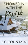 Snowed in with the Prince e-book