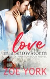 Love in a Snowstorm book summary, reviews and download