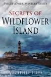 Secrets of Wildflower Island e-book