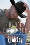 Chance Encounter book summary, reviews and downlod