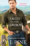 Saved by the Cowboy book summary, reviews and download