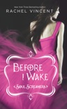 Before I Wake book summary, reviews and downlod