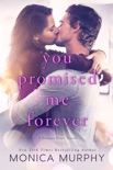 You Promised Me Forever book summary, reviews and downlod