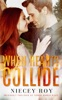 When Hearts Collide book image