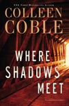 Where Shadows Meet book summary, reviews and downlod