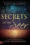 Secrets of the Seer book summary, reviews and download