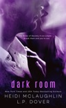 Dark Room book summary, reviews and downlod