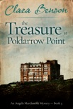 The Treasure at Poldarrow Point book summary, reviews and download
