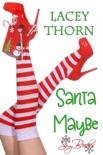 Santa Maybe book summary, reviews and downlod