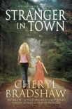 Stranger in Town book summary, reviews and download