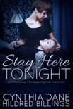 Stay Here Tonight book summary, reviews and download