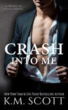 Crash into Me book summary, reviews and download