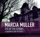 Eye of the Storm book summary, reviews and downlod
