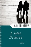 A Late Divorce book summary, reviews and download