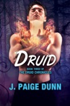 Druid: Book Three of the Druid Chronicles book summary, reviews and download