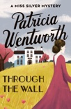 Through the Wall book summary, reviews and downlod
