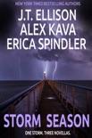Storm Season book summary, reviews and downlod