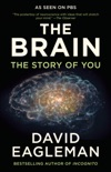 The Brain book summary, reviews and download