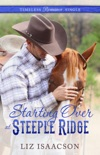 Starting Over at Steeple Ridge book summary, reviews and downlod