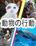 動物の行動 book summary, reviews and downlod