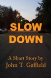 Slow Down book summary, reviews and download