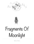 Fragments of Moonlight book summary, reviews and download