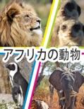 アフリカの動物 book summary, reviews and downlod