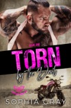 Torn by the Devil (Book 1) book summary, reviews and download