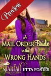 A Mail Order Bride in the Wrong Hands (Preview) book summary, reviews and download