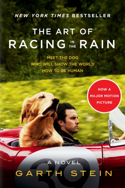 The Art of Racing In the Rain by Garth Stein Book Summary, Reviews and E-Book Download