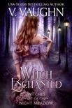 Witch Enchanted book summary, reviews and downlod