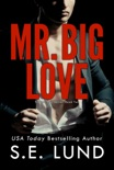 Mr. Big Love book summary, reviews and downlod