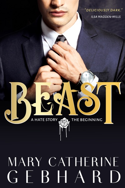 Beast: A Hate Story, The Beginning by Mary Catherine Gebhard Book Summary, Reviews and E-Book Download