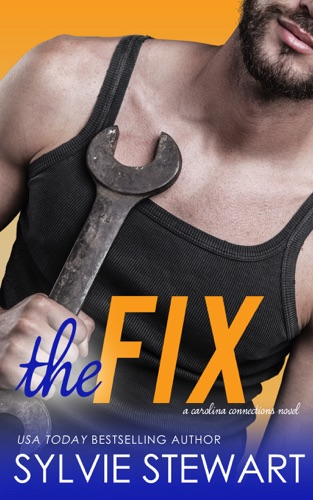 The Fix by Sylvie Stewart E-Book Download