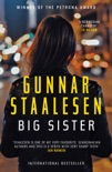 Big Sister book summary, reviews and download