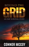 Beyond The Grid book summary, reviews and download