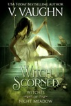 Witch Scorned book summary, reviews and downlod