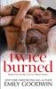 Twice Burned (Luke & Lexi #2) book image