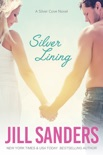 Silver Lining book summary, reviews and downlod