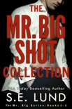 The Mr. Big Shot Collection book summary, reviews and downlod