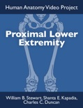 Proximal Lower Extremity book summary, reviews and download