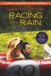 Racing in the Rain book summary, reviews and download