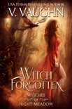 Witch Forgotten book summary, reviews and downlod