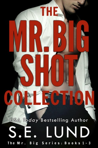 The Mr. Big Shot Collection by Draft2Digital, LLC book summary, reviews and downlod