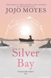 Silver Bay book summary, reviews and downlod