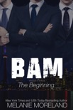 BAM - The Beginning book summary, reviews and download